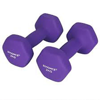 Set of 2 Dumbbells Weights