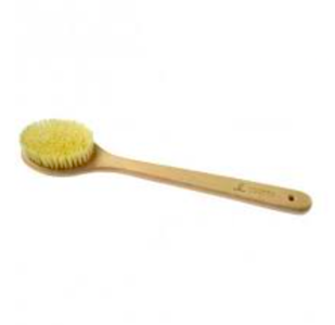 Dry Skin Sauna Brush with Cactus Britle