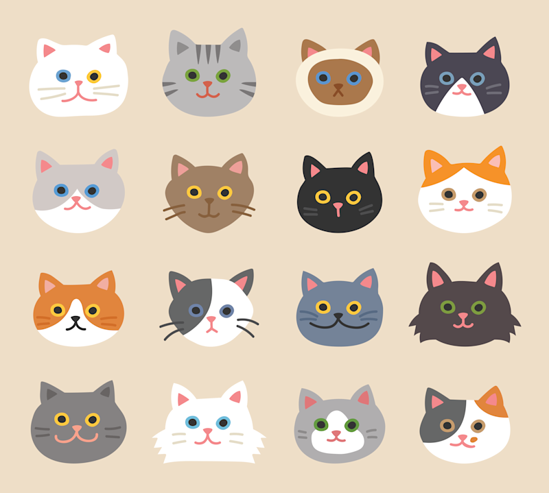 Different cartoon cat faces are shown, as examples for what kind of cat faces you can draw in your project.