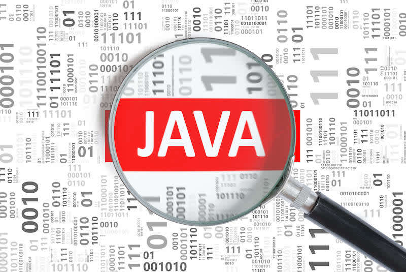 Label showing the Java coding language