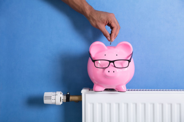 How Much Does A New Boiler Cost >> Hiber How Much Does A New Boiler Cost