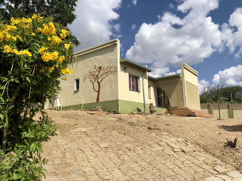 Das frisch gestrichene grün-gelbe Haus ist umgeben von eine schützenden Mauer. An der Seite des Hauses ist ein Baum gemalt worden und die großen Büsche im Garten tragen große gelbe Blumen.