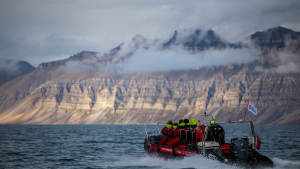 Isfjord-safari-bird-cliffs Boattrip Arctic-wildlife Agurtxane-Concellon