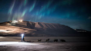 Dogsled-Expedition_Foxdalen_Dogsledding_Northern-lights_Explore_Travel_Adventure_Svalbard_Agurtxane-Concellon_Landscape-1920x1080_03
