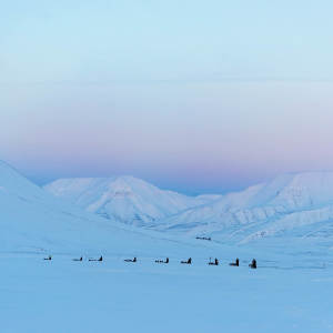 Light-winter Dog-sledding Arctic-landscape Agurtxane-Concellon-Thumbnail-1920x1920 02