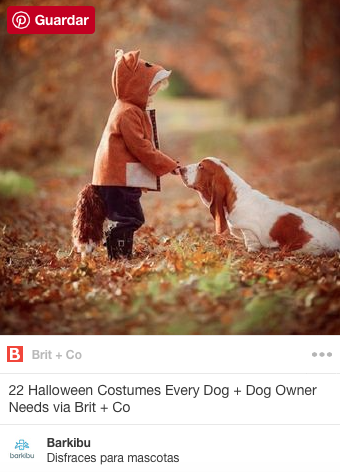 Costumes for pets kids