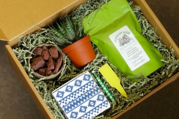 Plant of the Month Boxes Perfect to Grow Your Garden