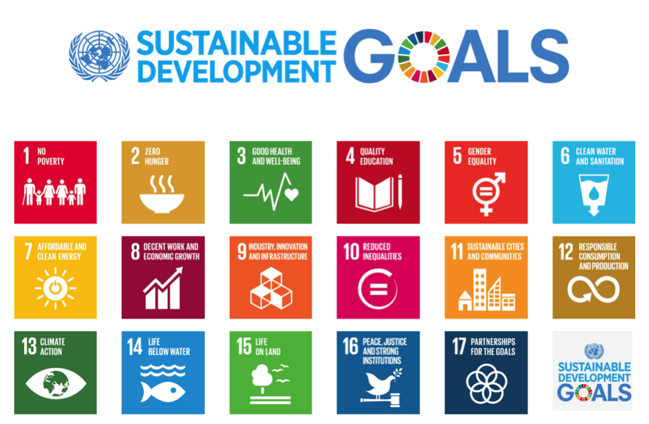 sustainable development goals explained