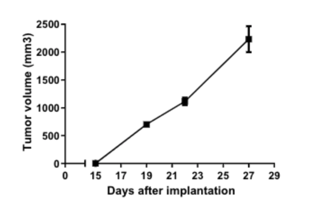 Subcutaneous melanoma syngeneic mouse model tumour volume growth rate graph