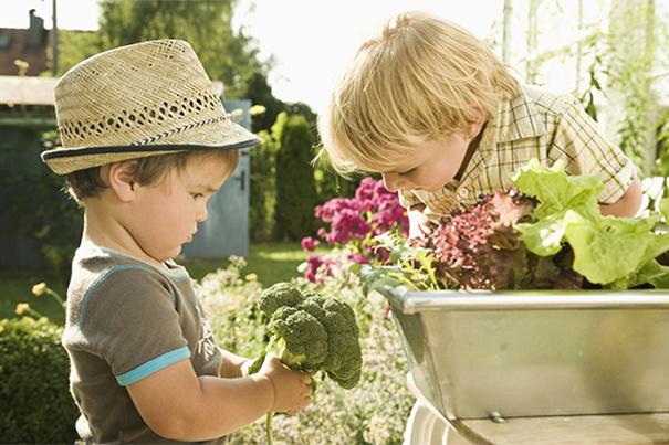 Jardinagem infantil uma forma de fazer exercício