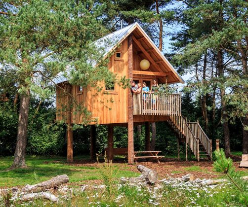 intro-tree-house-europarcs-de-wije-werelt