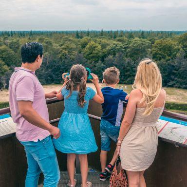 surroundings-look-out-point-pyramide-van-austerlitz-europarcs-de-utrechtse-heuvelrug