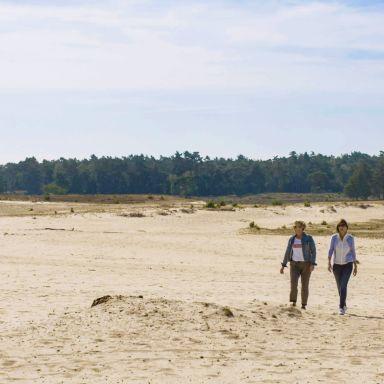 surroundings-veluwe-walking-europarcs-de-wije-werelt
