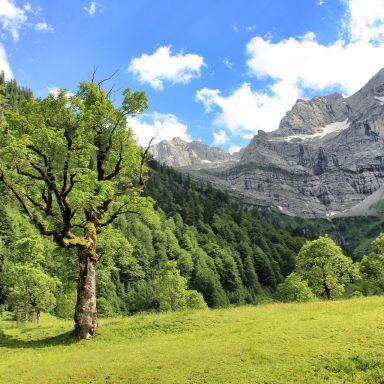 Karwendel nature