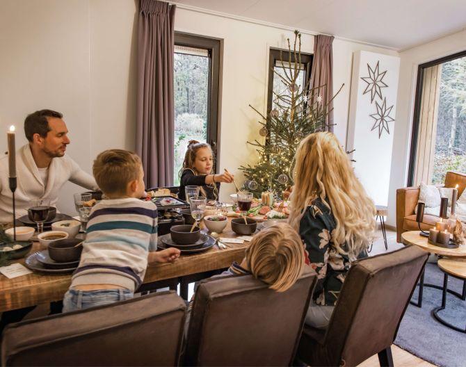 holiday-home-christmas-tree-family-dinner-europarcs