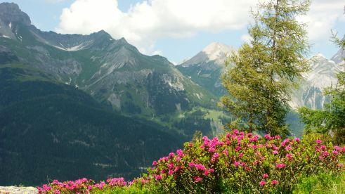 nature-europarcs-arlberg