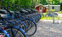 facilities-bikes-europarcs-het-amsterdamse-bos