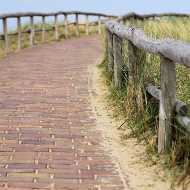 texel path