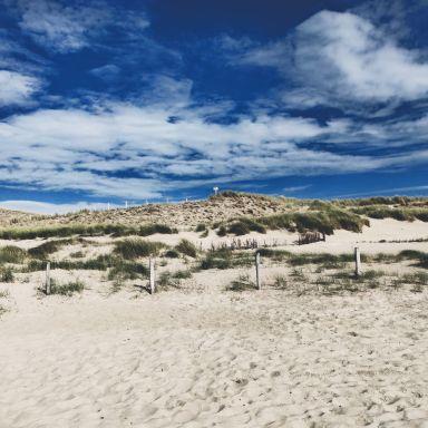 noord-holland-petten-aan-zee-beach
