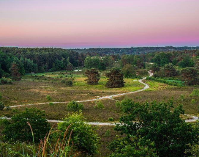 surroundigs-heathland-europarcs-brunssummerheide