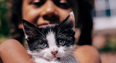 cat girl unsplash