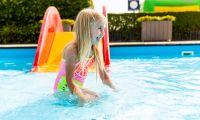Buitenzwembad - De Woudhoeve