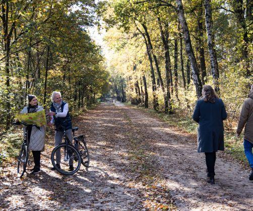 autumn-forerst-europarcs-de-wije-werelt