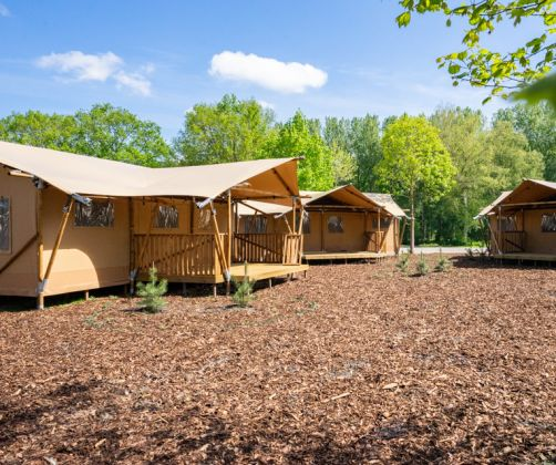 intro-glamping-tents-europarcs-het-amsterdamse-bos
