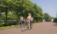 Bicycle surroundings