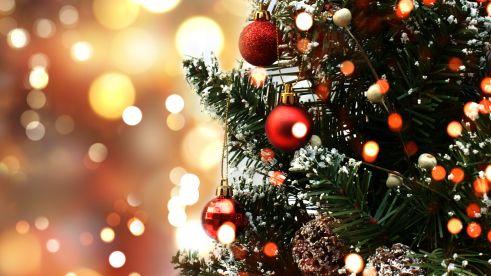 background-christmas-tree-europarcs