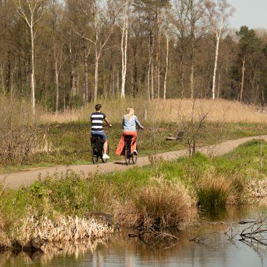 surroundings-bike-rental-nature-europarcs-de-hoge-kempen