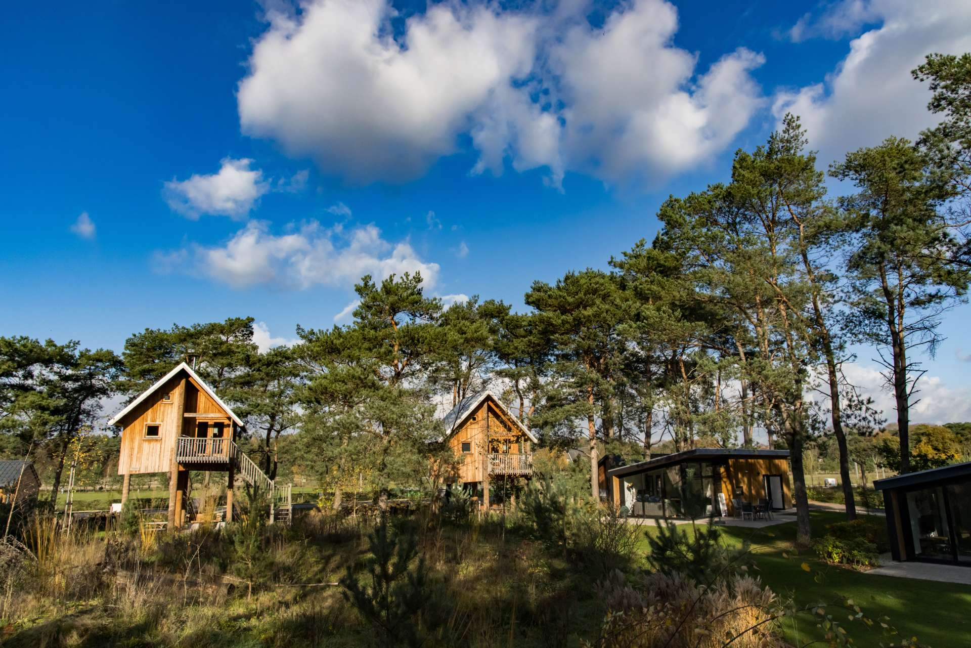 header-park-tree-house-europarcs-de-wije-werelt