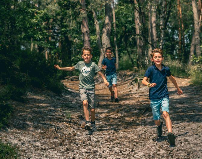 surroundings-kids-forrest-europarcs-brunssummerheide