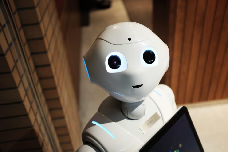 Robot patrzący się w kamerę