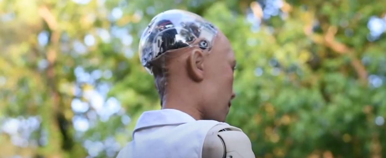 Android Sophia w lesie. Robot widziany od tyłu, w tle drzewa, liście i niebo.