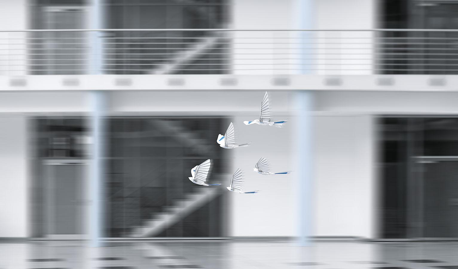 Bioniczne ptaki BionicSwift na grafice koncepcyjnej.
