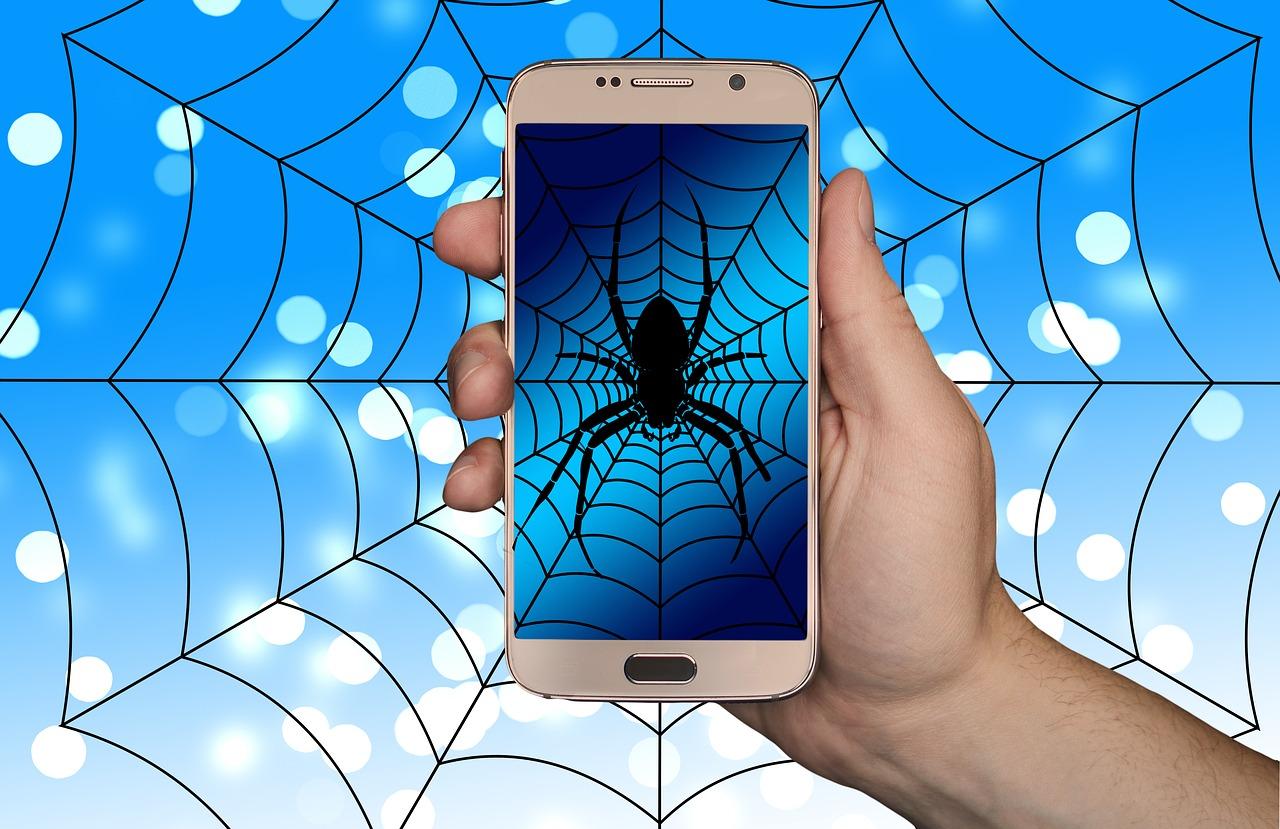 Pająk widziany na ekranie smartfona.