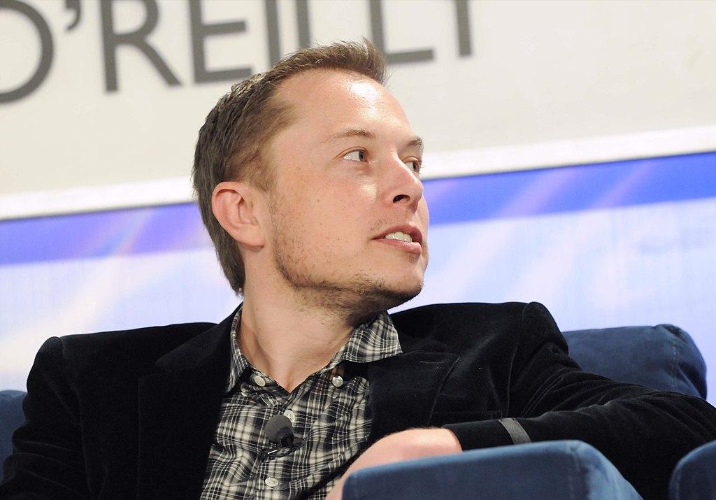 Elon Musk z profilu