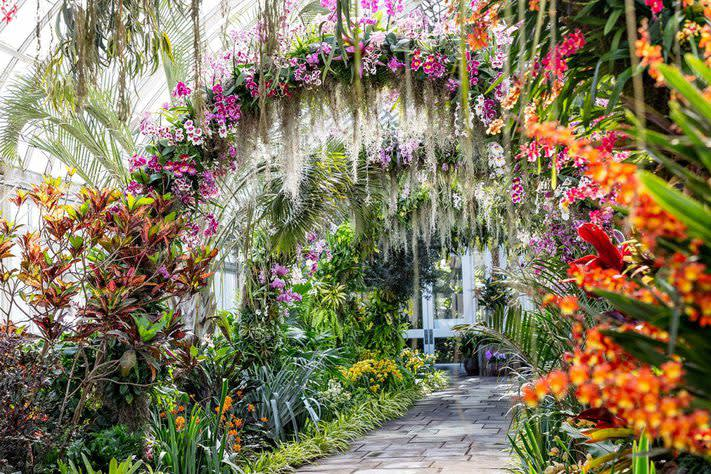 NYBG, Orchid Garden
