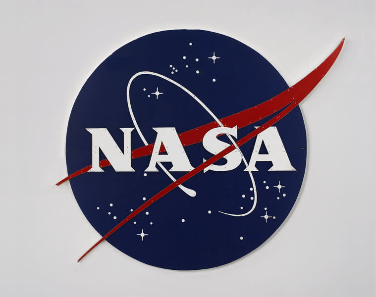 Tom Sachs, Nasa Meatball Logo, Color, 2007