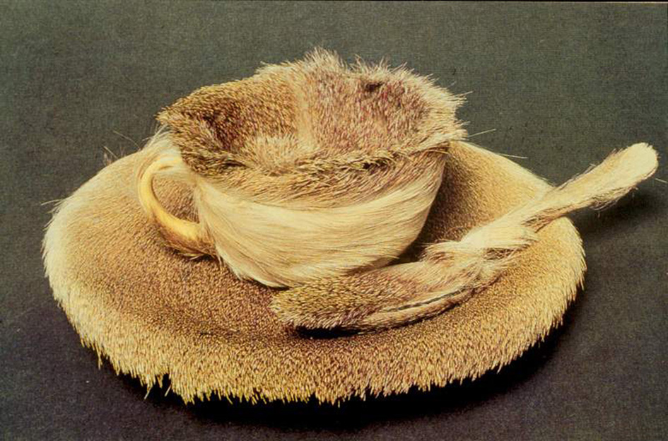 Meret oppenheim object  1936. fur covered cup  saucer  and spoon