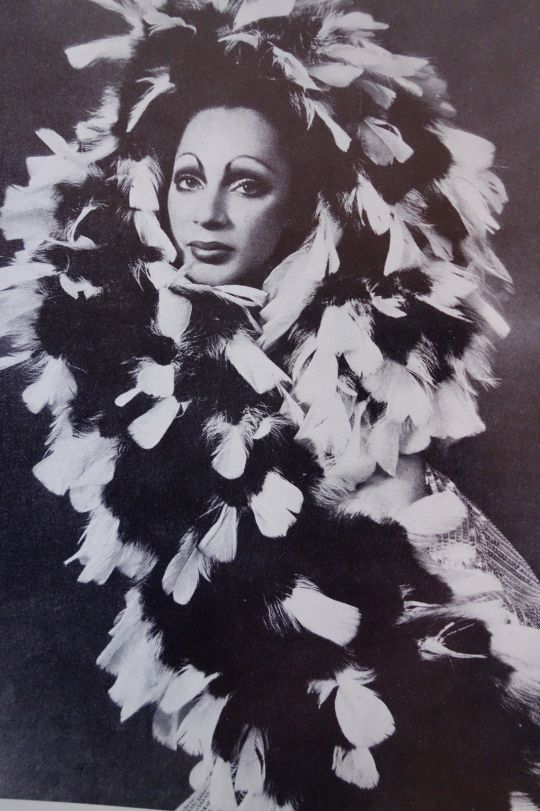 Holly woodlawn by jack mitchell  after dark magazine