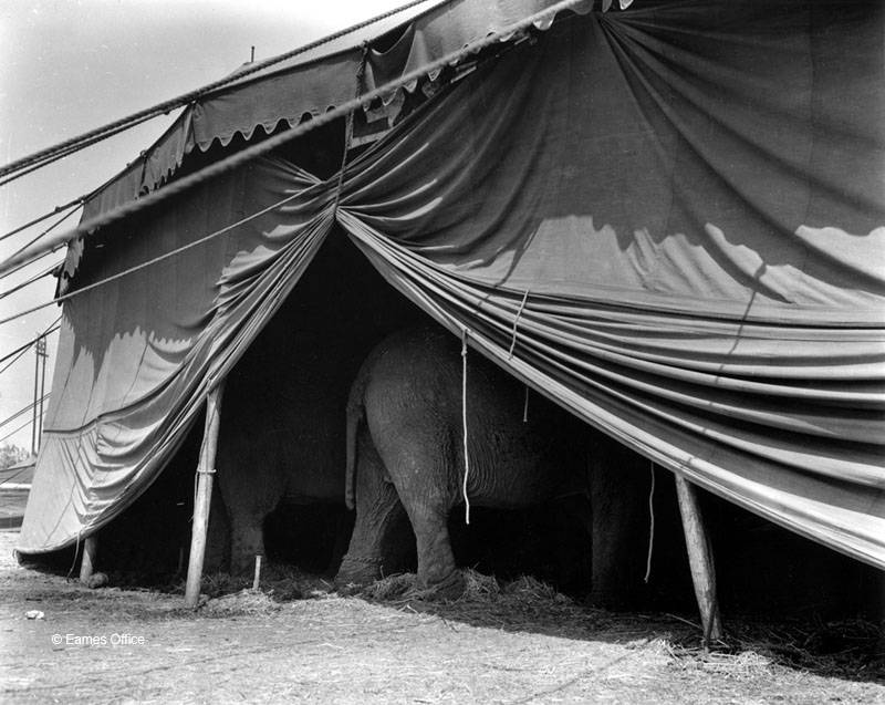 Charles + Ray Eames, Circus Photography
