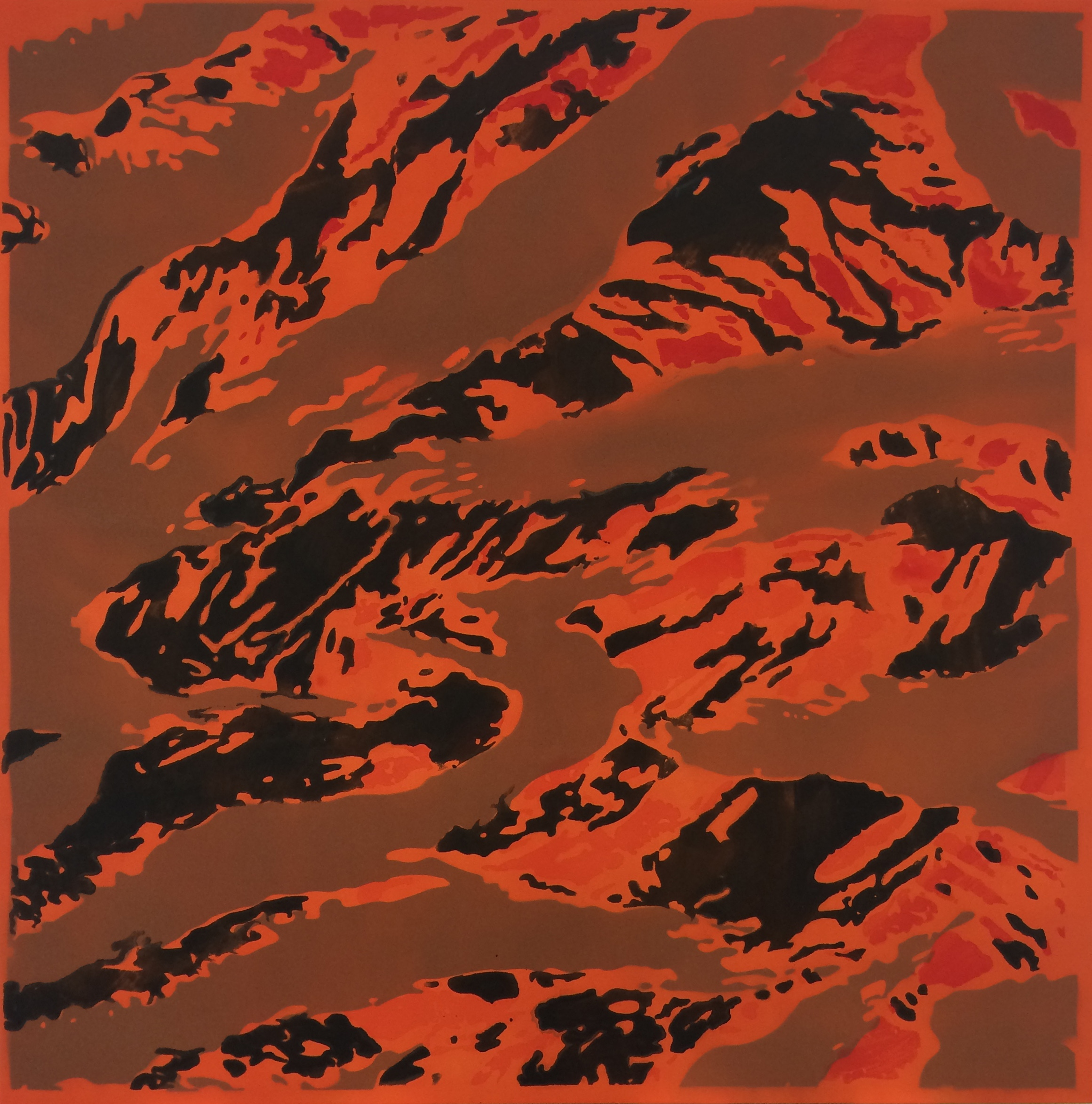 Lucien smith.  l  untitled  camo brown magma