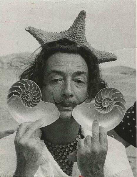 Salvador dali with starfish and shells