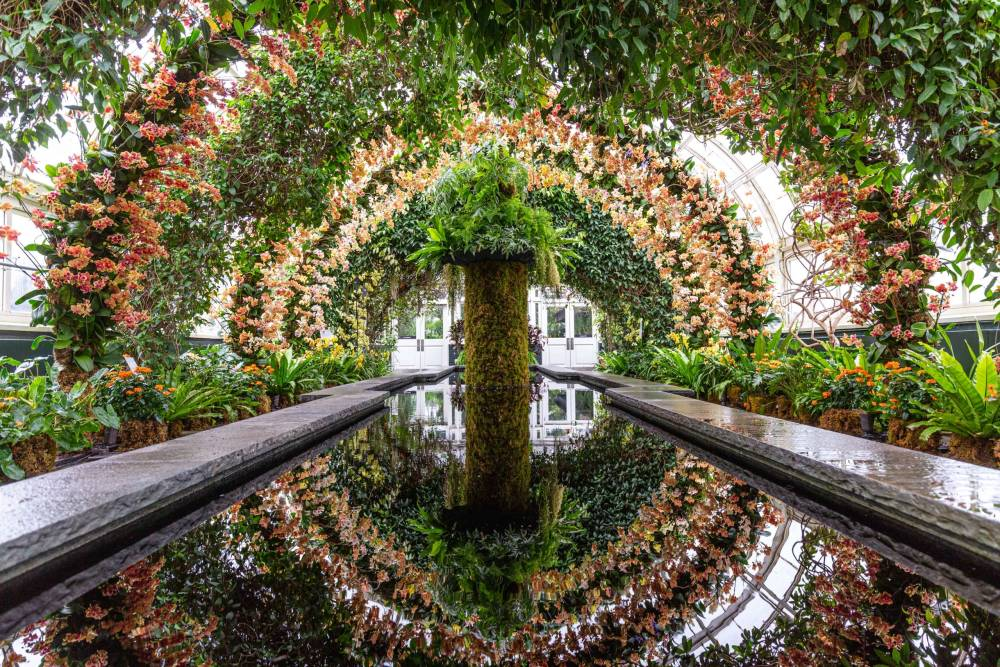 NYBG , Orchid Garden