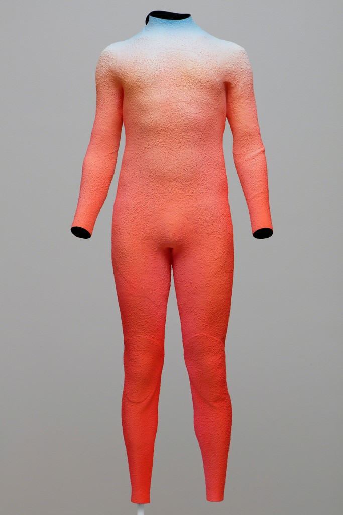 Self portrait  wetsuit   2015 by alex israel