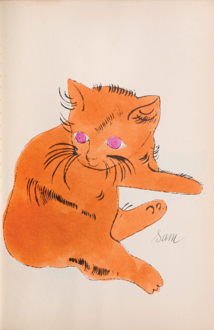Andy warhol  25 cats name d  sam and one blue pussy  1956  2
