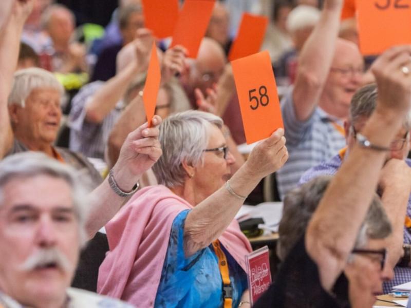 Votering på landsmøtet, 6. juni 2018