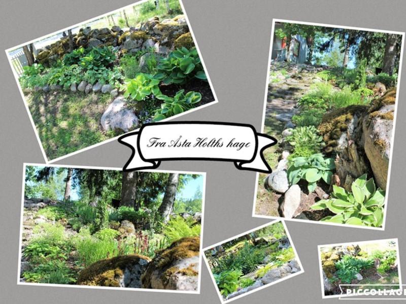 Bilder fra hagen som er opprettet i Åstas ånd